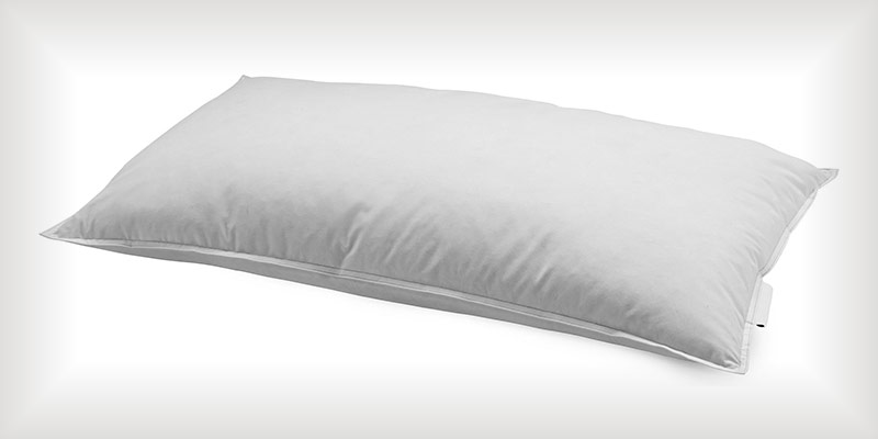 Campeazy Pillow Hire